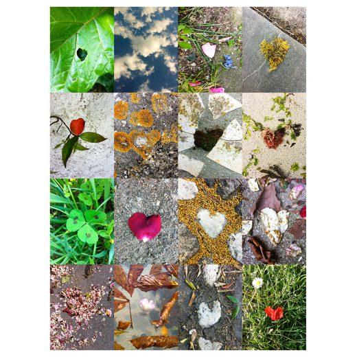 Coeurs au vert - Chasseurs de coeurs